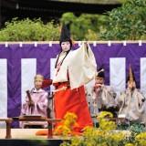Shira-Byoshi 2011