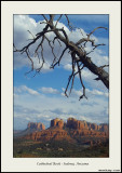 Images from Arizona
