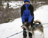 Helping the Sled Dog