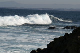 Pacific Grove/Asilomar 01