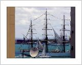 Sail Cartagena and SurOpti 2006