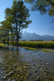 Meadow Creek