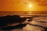 Tangerine Sun