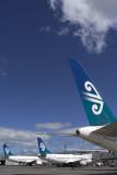 AIR NEW ZEALAND TAILS AKL RF IMG_0129.jpg