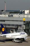 LUFTHANSA BOEING 737 500 DUS RF IMG_2328.jpg