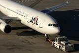 JAL AIRBUS A300 600R HND RF IMG_7543.jpg