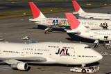 JAL AIRCRAFT HND RF IMG_7534.jpg