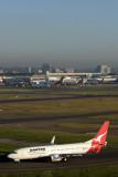 QANTAS BOEING 737 800 SYD RF MG_9596.jpg