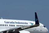 GARUDA INDONESIA BOEING 737 800 PER RF IMG_1834.jpg