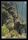 Peru328.jpg