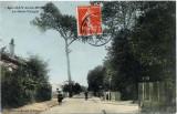 Gros Peuplier, dit Gros peuple, Avenue du gros Peuplier, Avenue du Raincy, Avenue Pierre Jouhet