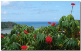 Nacascolo Bay