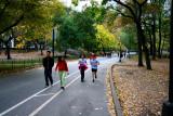 Fall in New York