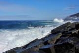 Surf Pouch Cove 016
