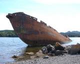 Whaler 002**WINNER**