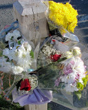 Zachary Flowers 015