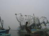 Socked in by Fog
