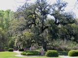 Audubon Pilgrimage 2007
