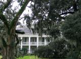 Felicity Plantation