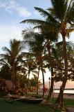Old Lahaina Luau - Boat & Trees