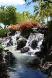Oahu - Waterfall