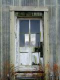 window thru door