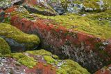 Red and Green Rocks