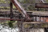 Berry Creek Br 8698.jpg
