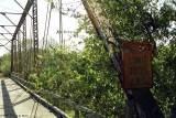 Berry Creek Br 0028.jpg