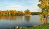 Autumn Colors In The Park I