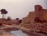 Bala Hisar and pool