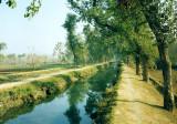 Mandani canal