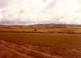 Turkestan - near Bala Murghab