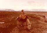 Man and donkey after Sibergan