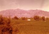 Near Jalalabad
