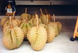 Turian fruit
