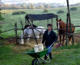Sylvia's morning chores
