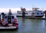Angel Island Ferry: Tiburon, CA