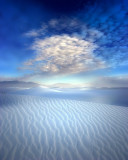 One Day, Alone in the White Desert
