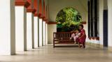 12072006-La Luz Cacao Plantation-Z-165.jpg