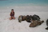 was really looking forward to see the beach full of sealions