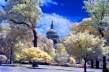 Washington DC in Infrared