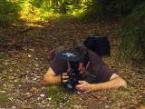 Salamander shooting by Cynops
