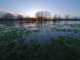 River Thame in Flood 2 by Bruce Clarke