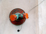 standpipe - charlie