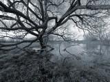 1st  - c48 Below the Belt - River Thame in Flood 3 by Bruce Clarke