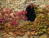 Graveyard keeper's sight hole - Miro