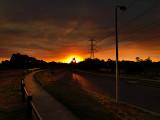 Sunset Boulevard by Dennis