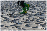 Green boots and shells.jpg