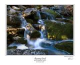 Roaring Creek.jpg